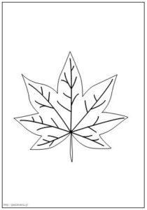 jesienne liście kolorowanki szablony